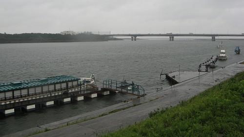 相模川河口