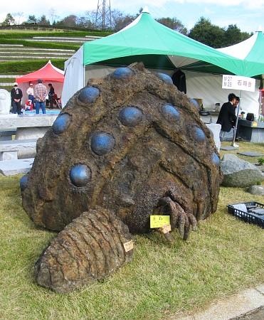 王蟲の化石