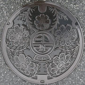 駅からマンホール » 千葉県印西市