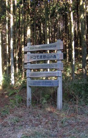 ドコモ鹿野山の森