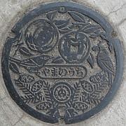 長野県下高井郡山ノ内町