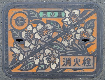 茨城県真壁郡関城町