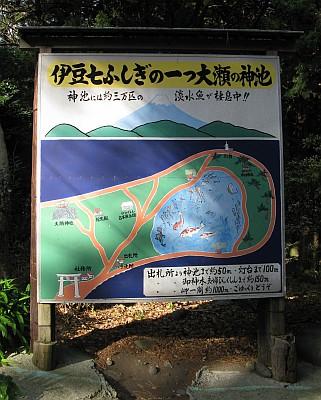 伊豆七ふしぎの一つ大瀬の神池