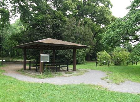 小石川植物園 小石川養生所の井戸