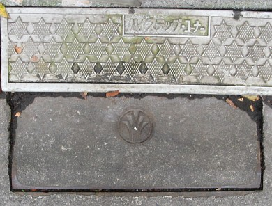 東京都杉並区